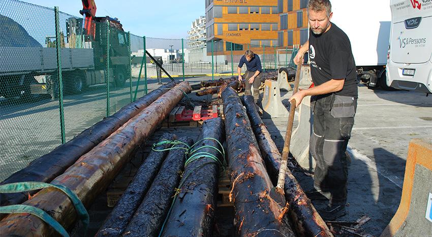 Sjefen for byggeprosjektet, Morten Hesthammer fra Hardanger Fartøyvernsenter, sørget for barking av trestammene som skal bli master på bankskøyta, litt tidligere i høst. Her ser vi han i sving med det arbeidet.